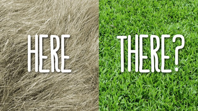blog-pics-1200x675-greener-grass.jpg