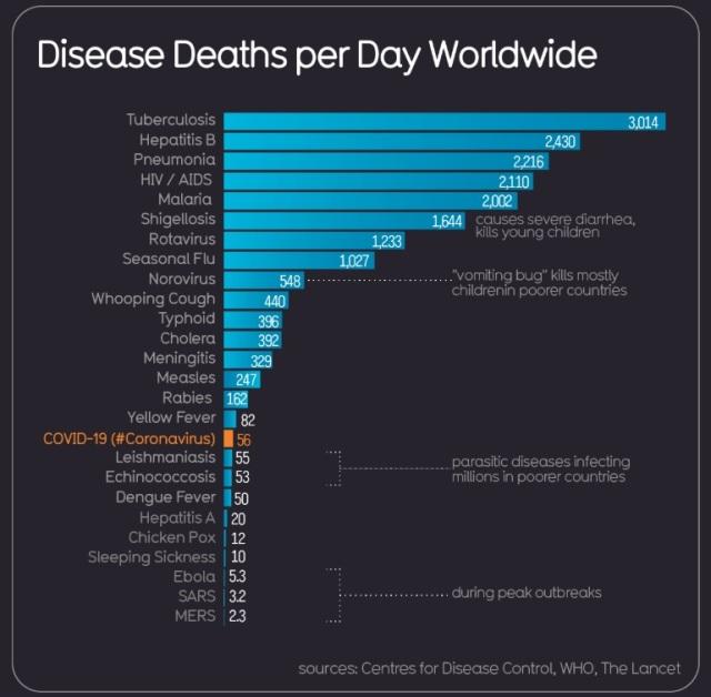 deaths per day